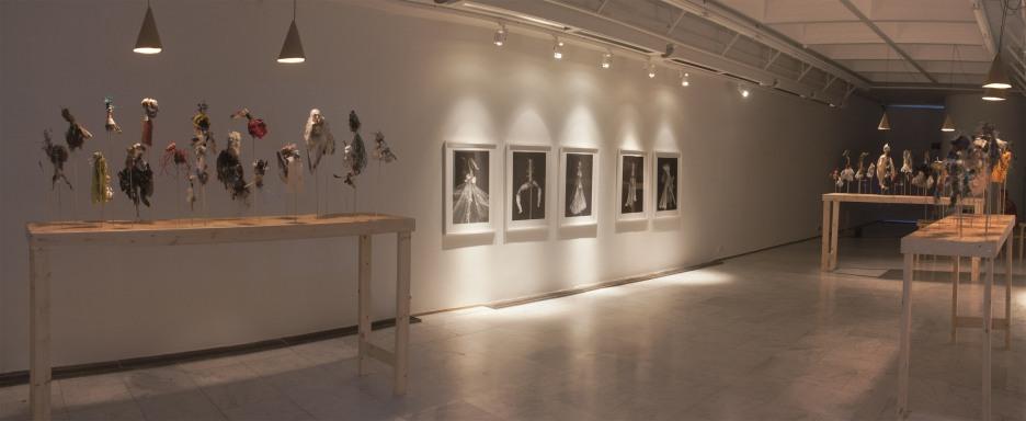Sirius Passet -installation view, 2014